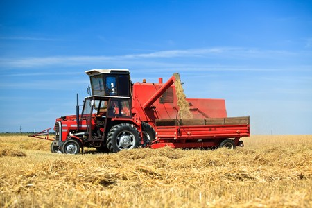 Tractor and combine harvesting wheat photo