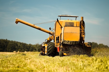 Yellow combine harvester working in a wheat field Stock Photo - 7823589