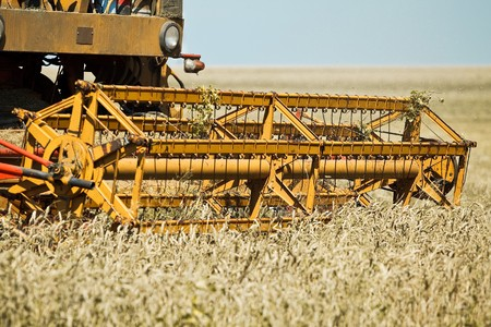 Yellow combine harvester working in a wheat field Stock Photo - 7823626