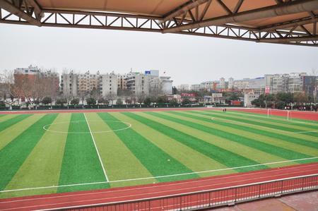 verbs: Sports ground
