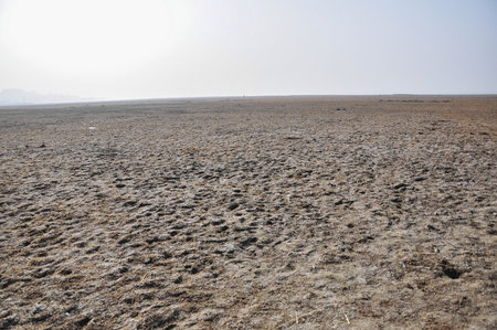 as far as the eye can see: Landscape view of an open land