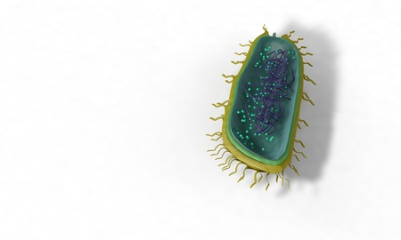 Bacterial structure model, background 3d render working Stock Photo