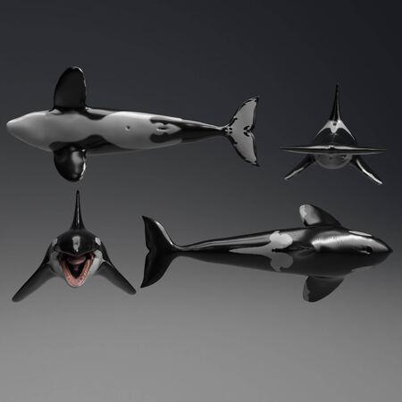 Killer whale of background, 3d render Imagens