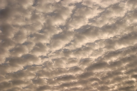 sky with white puffy clouds  Stock Photo