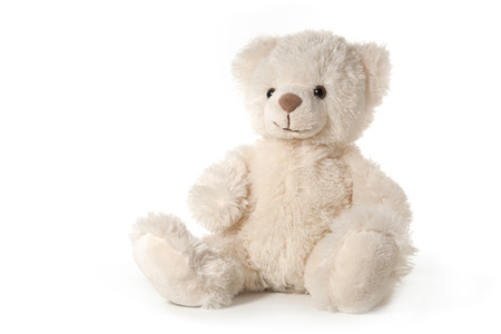 teddy: Fluffy teddy bear isolated on white