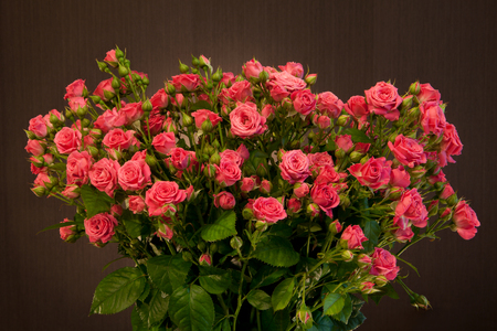Bouquet of small red roses on a brown background