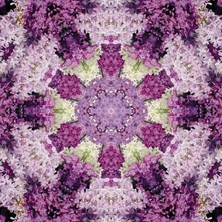 Decorative panel of lilac in the form of a kaleidoscope Stock Photo