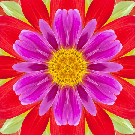 Decorative panel of dahlia in the form of a kaleidoscope