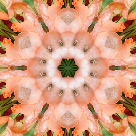 Blumen Gladiolus in Form eines Bildes eines Kaleidoskops Standard-Bild - 84912346