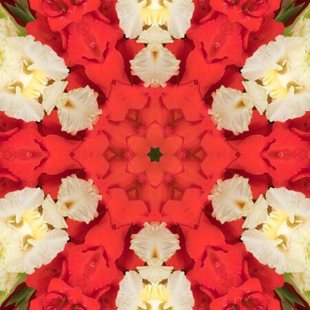 Flowers gladiolus in the form of a picture of a kaleidoscope Stock Photo