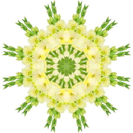 Yellow flowers gladiolus in the form of a picture of a kaleidoscope