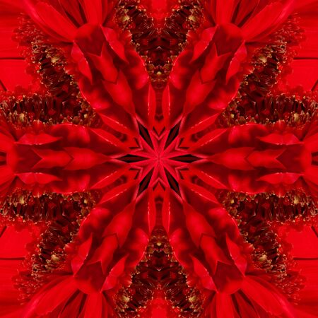 Red gerbera flower in the form of a picture of a kaleidoscope