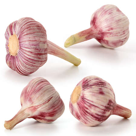 Four heads of fresh red garlic on a white background. Full depth of field. With clipping paths Zdjęcie Seryjne