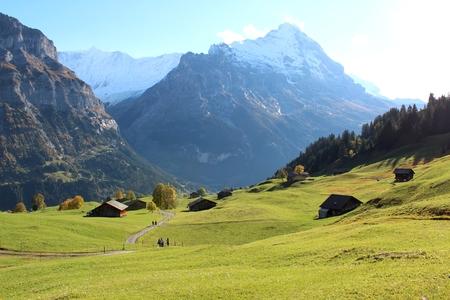 Amazing Swiss nature