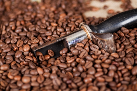 roaster: A close shot of Coffee Beans with a spoon Stock Photo