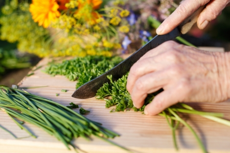 Hands of an elderly grandmother chopping fresh parsley from the garden for use in her cooking as she prepares the meal photo