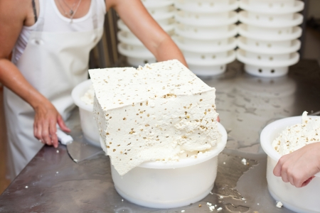 curd: Cheesemaker filling several colanders with large blocks of fresh curd to completely drain the whey Stock Photo