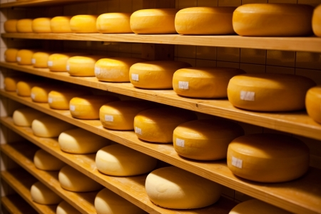 creamery: Cheese with raclette in ripening cellar in a close up image