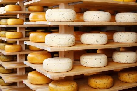Geassorteerde aroma van kaas wielen rijpen op rijen houten planken in een kaasfabriek Stockfoto
