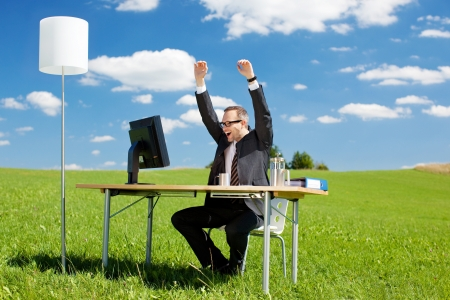 exuberant: Happy businessman raising his arms in a green meadow