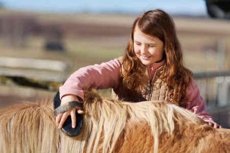 ponies: Cute pretty little teenage girl reaching over and brushing the mane of her pet pony Stock Photo