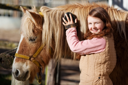 Smiling pretty young teenage girl standing grooming the mane of her horse with a brush in the sunshine in an outdoor paddock