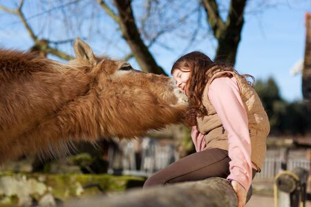 Young girl sitting in the wooden paddock fence exchange cuddles with her horse photo