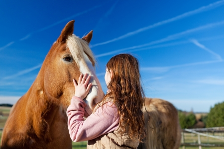 Girl petting a horse in the paddock on a bright sunny day Stock Photo