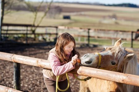 Young girl on a wooden fence feeding carrots to a horse photo