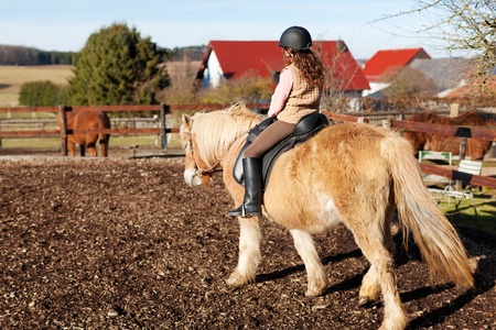 pony ride: Young girl riding away on her horse on the paddock