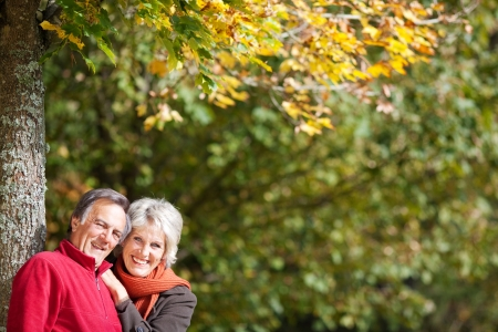 older couples: Portrait of a happy senior couple under the tree at the park Stock Photo
