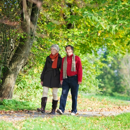Sweet senior couple walking holding hands in the park photo