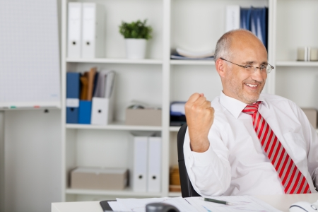 Mature businessman with clenched fist celebrating victory at office desk photo