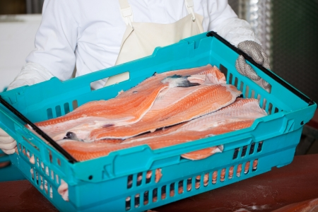 Midsection of worker with sliced fishes in crate Stock Photo