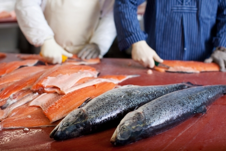 slicing: two men cutting salmon in fish industry Stock Photo
