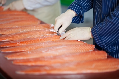 cropped: Cropped image of male workers cutting fishes with knife at table Stock Photo