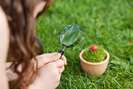 Cropped image of young girl looking at ladybird on potted plant in park photo