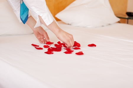 housekeeper hands arranging petals in heart shape on bed in hotel room photo