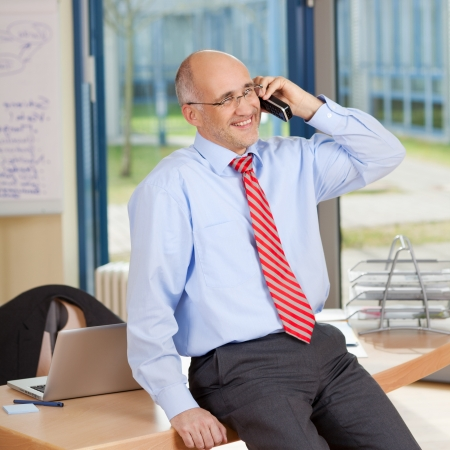Happy mature businessman using cordless phone while sitting on desk at office photo