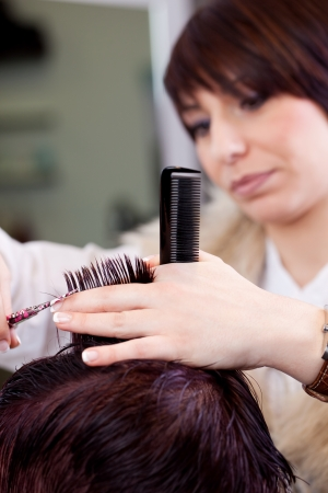 Attractive young female hairstylist cutting a customers hair in a hair salon Stock Photo - 21235146