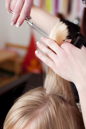Hairdresser cutting blond hair in a hair salon using a pair of scissors Stock Photo - 21226491
