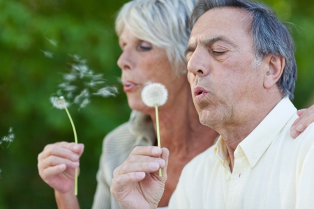 Closeup of senior couple blowing dandelion in park photo