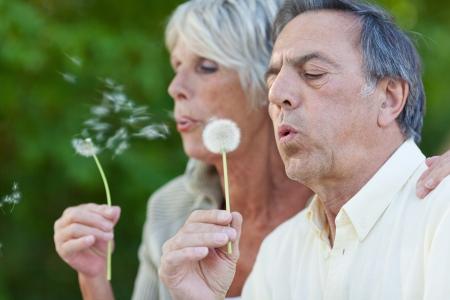 Closeup of senior couple blowing dandelion in park