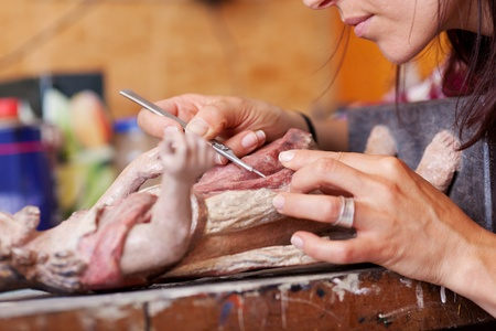 Cropped image of woman using scalpel on statue in workshop photo