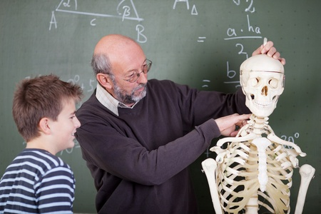 anatomical: Teacher and student during an anatomy class