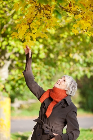 Smiling senior woman holding tree branch in park photo