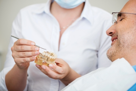 implantology: Midsection of female dentist explaining artificial teeth to patient in clinic