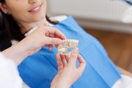 clinic: Closeup of dentists hands explaining teeth model to female patient at clinic Stock Photo