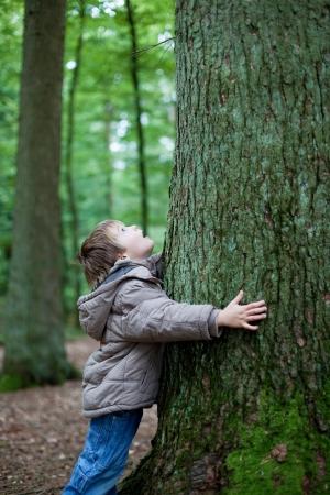 arboles frondosos: Niño pequeño que abraza el gran tronco de árbol en el bosque