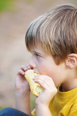 Side view shot of little boy eating corn on the cob photo